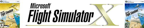 best flight simulator